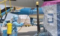 首批约12万剂新冠疫苗抵达胡志明市新山一机场