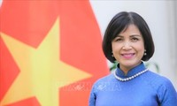 越南出席世界贸易组织渔业补贴规则谈判小组会议