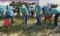 岘港市100多名青年团员参加清理海滩垃圾