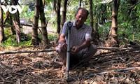 在咸水区成功种植竹笋的老农