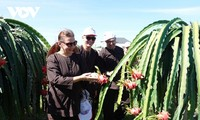 平顺省发展农业体验游
