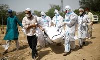印度依旧是新冠肺炎疫情震中