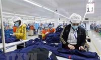 今年前5个月越南货物出口额增长30.7%