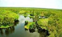 6.5世界环境日:越南主动进入生态系统恢复十年