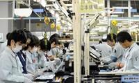 建议为越南输外劳工接种新冠疫苗
