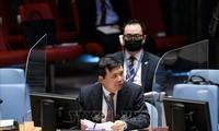 越南主持召开联合国安理会南苏丹问题委员会会议
