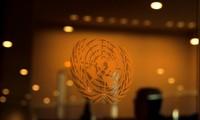 联合国安理会就埃塞俄比亚复兴大坝情况进行对话