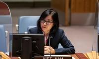 越南呼吁采取紧急行动,防止黎巴嫩陷入崩溃状况