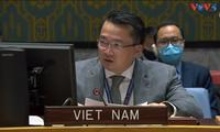 越南呼吁利比亚各方加强和解