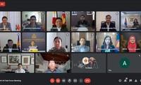 越南主持东盟一体化倡议工作组会议