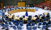 越南呼吁索马里各方化解分歧,将国家民族利益放在首位