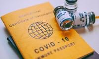 """越南与世界各国互认""""疫苗护照"""""""