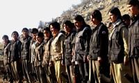 Banyak penembak PKK tewas dalam bentrokan dengan pasukan pemerintah Turki