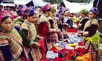 Vietnam dan Meksiko bertukar pengalaman dalam pekerjaan etnis minoritas