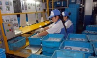 Kira-kira 100 proyek investasi asing dilakukan di zona-zona industri Bac Giang