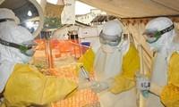 Kuba menyatakan menyelesaikan misi internasional tentang menanggulangi Ebola di Afrika