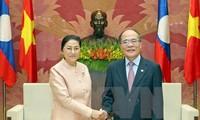 Ketua MN Nguyen Sinh Hung melakukan pembicaraan dengan Ketua Parlemen Laos, Pany Yathotou