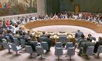 DK PBB mengesahkan resolusi tentang masalah senjata kimia di Suriah