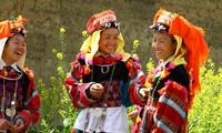 Ciri budaya yang unik dari warga etnis minoritas Lo Lo di daerah dataran tinggi batu Dong Van