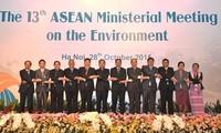 Negara-negara ASEAN bekerjasama mencegah situasi kebakaran hutan dan kabut asap