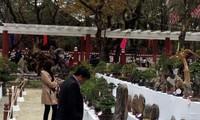 Pesta Musim Semi baru di tepian sungai Huong menyerap kedatangan puluhan ribu orang
