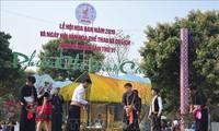 Nord-Ouest : la bauhinie en fête