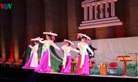 Vorführung traditioneller vietnamesischer Musik in Frankreich