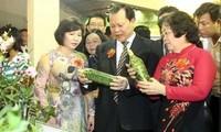Konferenz zur Investitions- , Handels- und Tourismusförderung im Mekong-Delta
