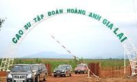 Laotische Zeitungen loben den vietnamesischen Konzern Hoang Anh Gia Lai