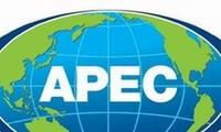 APEC soll Haushaltsverbrauch fördern