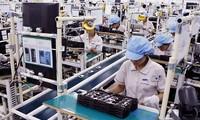 Handelsvolumen zwischen Vietnam und Brasilien steigt