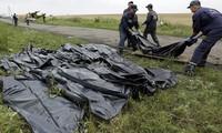Politische Interessen hinter MH17-Tragödie