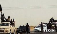 UN-Sicherheitsrat verlängert Mandat der UNO-Mission im Irak und in Zypern