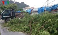 Nordvietnamesische Provinzen ergreifen Maßnahmen gegen Taifun Kalmaegi