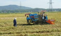 Kreis Hoa Vang der Stadt Da Nang: Lichtpunkt in Neugestaltung ländlicher Räume