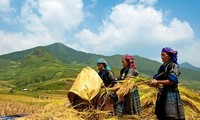 Privilegierte Investitionen zur Sozialwirtschaftsentwicklung in entlegenen Regionen