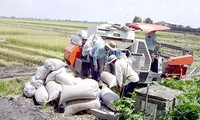 Die Genossenschaft Khiet Tam in Can Tho