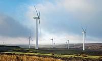 Chancen zur Entwicklung der Windenergie in Vietnam