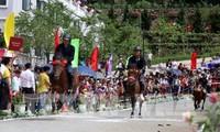 Das erste Fansipan Pferderennen