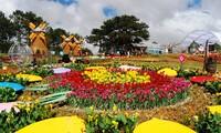 Da Lat's Blumenfestival 2019 findet im Dezember statt