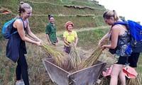 Bauern in Ha Giang engagieren sich für Gemeinschaftstourismus