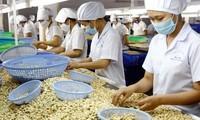 Exportvolumen Vietnams nach Israel kann 2019 mehr als 800 Millionen US-Dollar erreichen