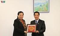 Vizeparlamentspräsidentin Tong Thi Phong trifft ihren laotischen Amtskollegen