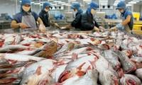 Günstige Chancen für vietnamesischen Pangasius auf US-Markt