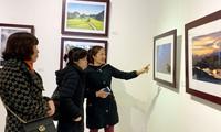 Vorstellung der Kunst- und Fotowerke über Partei und Frühling