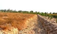 EU helfen den von Dürre und Versalzung betroffenen Bewohnern in Vietnam