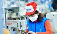 Textilkonzern Vietnams versorgt den Markt mit zehn Millionen antibakteriellen Mundschutzmasken
