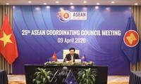 Vizepremierminister Pham Binh Minh leitet Online-Sitzung des ASEAN-Koordinationsrates