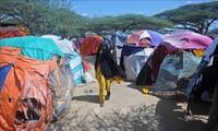 UNO ruft die Weltgemeinschaft zur Hilfe für Somalia auf
