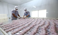 Am 1. August wird EVFTA in Kraft treten